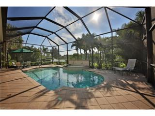 12439 Arbor View Dr, Fort Myers, FL 33908 (MLS #216028091) :: The New Home Spot, Inc.