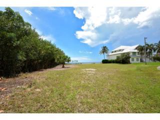 2288 Macadamia Ln, St. James City, FL 33956 (MLS #216048948) :: The New Home Spot, Inc.