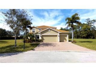 13223 Little Gem Cir, Fort Myers, FL 33913 (MLS #217001488) :: The New Home Spot, Inc.