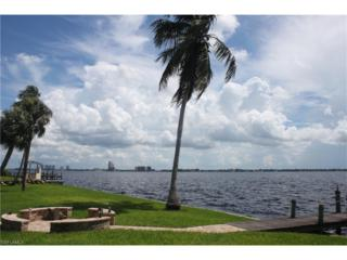 1741 Seafan Cir, North Fort Myers, FL 33903 (#217003374) :: Homes and Land Brokers, Inc