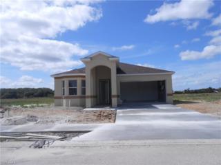 953 Hamilton St, Immokalee, FL 34142 (MLS #217003743) :: The New Home Spot, Inc.