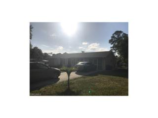 1459 Piney Rd, North Fort Myers, FL 33903 (MLS #217010440) :: The New Home Spot, Inc.