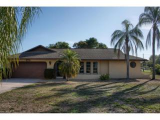 215 SE 12th Ave, Cape Coral, FL 33990 (MLS #217017824) :: The New Home Spot, Inc.