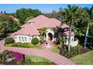 15244 Fiddlesticks Blvd, Fort Myers, FL 33912 (MLS #217018043) :: The New Home Spot, Inc.