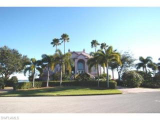 12520 Panasoffkee Dr, North Fort Myers, FL 33903 (MLS #214029084) :: The New Home Spot, Inc.