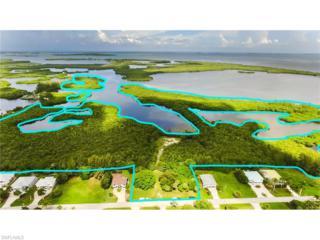 16269 Estuary Ct, Bokeelia, FL 33922 (MLS #215049900) :: The New Home Spot, Inc.
