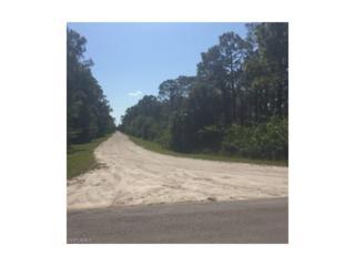 27266 Treadmill Dr, Punta Gorda, FL 33955 (MLS #216033947) :: The New Home Spot, Inc.
