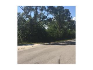 27262 Treadmill Dr, Punta Gorda, FL 33955 (MLS #216033950) :: The New Home Spot, Inc.