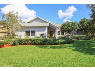 16580 Bear Cub Ct, Fort Myers, FL 33908 (MLS #217010850) :: The New Home Spot, Inc.