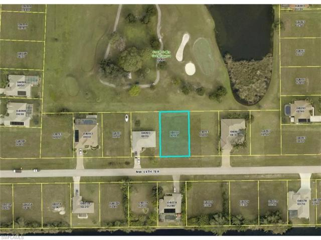 2919 NW 14th Ter, Cape Coral, FL 33993 (MLS #216045962) :: The New Home Spot, Inc.