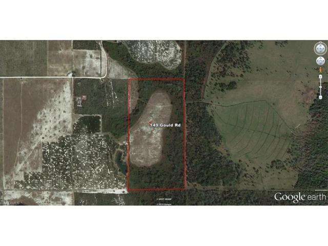 149 Gould Rd E, Venus, FL 33960 (#216047003) :: Homes and Land Brokers, Inc