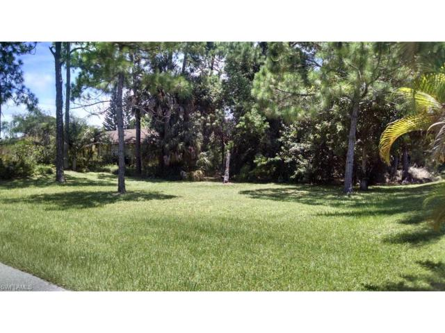 27181 Richview Ct, Bonita Springs, FL 34135 (MLS #216047465) :: The New Home Spot, Inc.