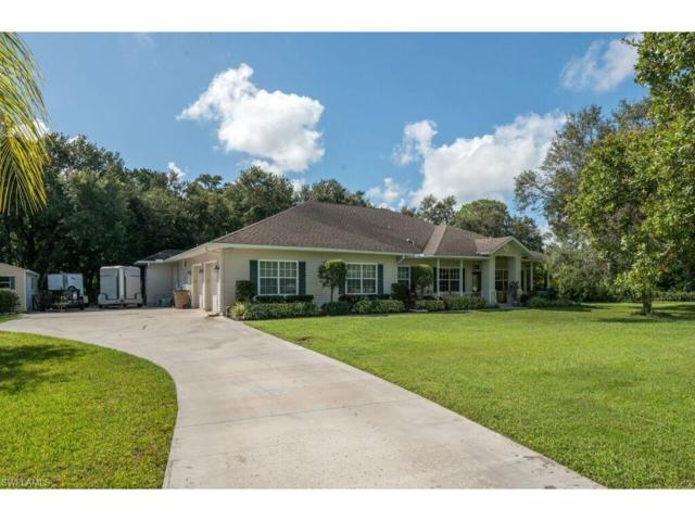 18681 Telegraph Creek Ln, Alva, FL 33920 (MLS #216055625) :: The New Home Spot, Inc.