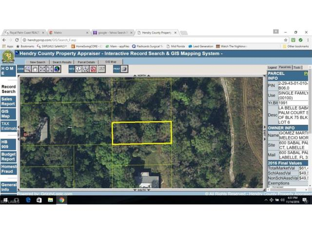 Ford Ave, Labelle, FL 33935 (MLS #216071156) :: The New Home Spot, Inc.