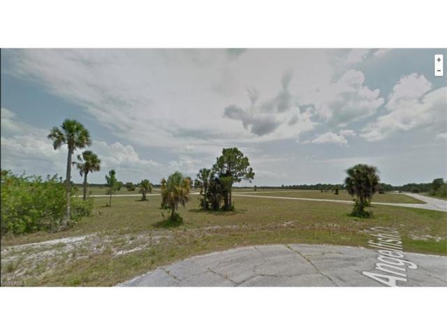 14255 Anglefish Ct, Placida, FL 33946 (MLS #216072712) :: The New Home Spot, Inc.