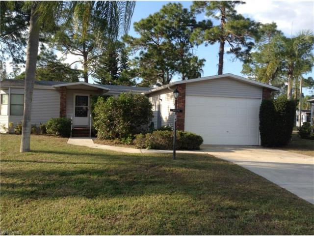 19690 Eagle Trace Ct, North Fort Myers, FL 33903 (MLS #217004203) :: The New Home Spot, Inc.