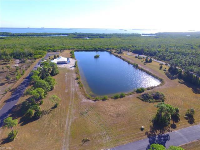 3431 Heron Landing Cir, St. James City, FL 33956 (MLS #217005992) :: The New Home Spot, Inc.