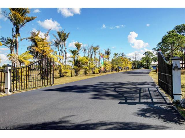 3641 Eagle Lake Dr, St. James City, FL 33956 (MLS #217006016) :: The New Home Spot, Inc.