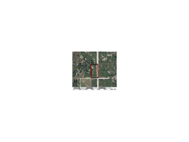 7716 14th Ter, Labelle, FL 33935 (MLS #217007060) :: The New Home Spot, Inc.
