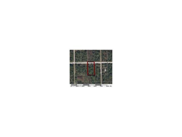 836 Appaloosa Ave, Clewiston, FL 33440 (MLS #217007768) :: The New Home Spot, Inc.