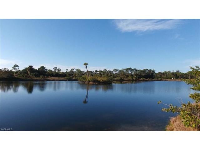 3371 Heron Landing Cir, Other, FL 33956 (MLS #217008780) :: The New Home Spot, Inc.