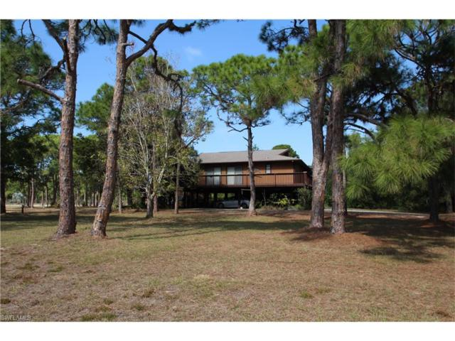 4128 Pine Tree Blvd, St. James City, FL 33956 (MLS #217012443) :: The New Home Spot, Inc.