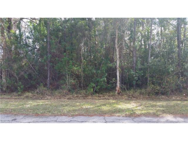 14210 Roof St, Fort Myers, FL 33905 (MLS #217014635) :: The New Home Spot, Inc.