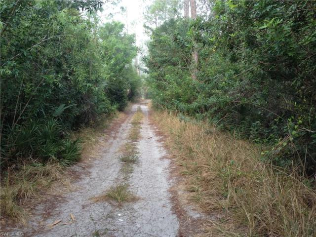 14301 E Terry St, Bonita Springs, FL 34135 (#217016518) :: Homes and Land Brokers, Inc