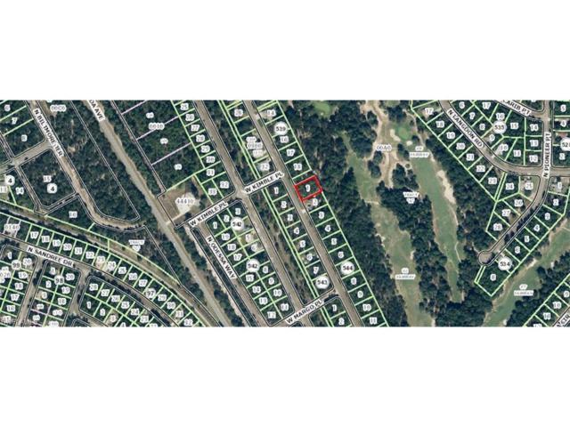 9967 N Sherman Dr, Citrus Springs, FL 34434 (MLS #217021162) :: The New Home Spot, Inc.