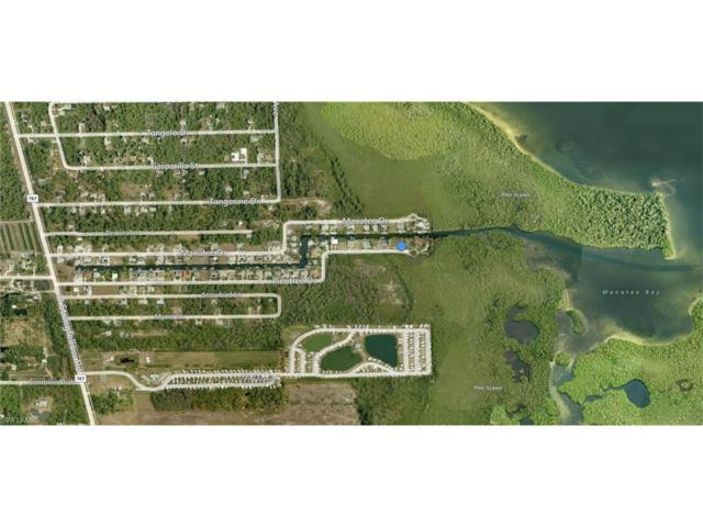 3246 Pinetree Dr, St. James City, FL 33956 (#217021359) :: Homes and Land Brokers, Inc