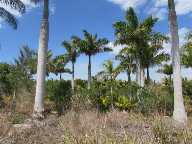 14589 Bokeelia Rd, Bokeelia, FL 33922 (MLS #217022699) :: The New Home Spot, Inc.