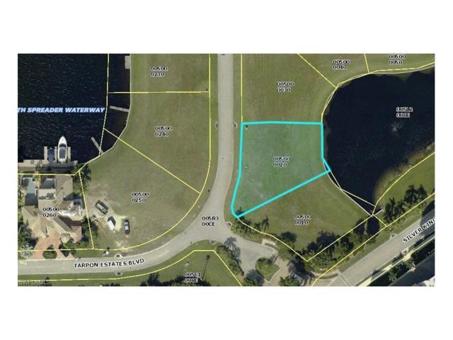 6047 Tarpon Estates Blvd, Cape Coral, FL 33914 (MLS #217024033) :: The New Home Spot, Inc.