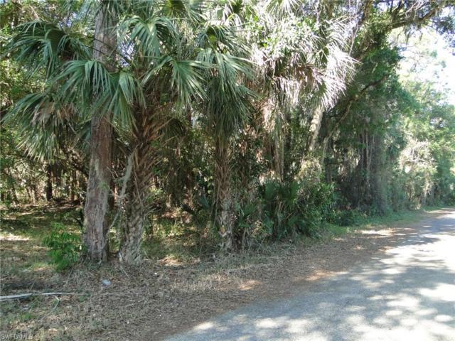 421 Santa Barbara St, North Fort Myers, FL 33903 (#217024864) :: Homes and Land Brokers, Inc