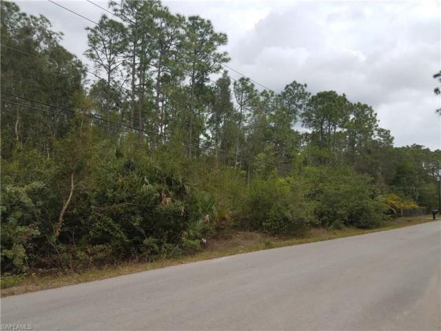 25655 Tropic Acres Dr, Bonita Springs, FL 34135 (MLS #217027281) :: The New Home Spot, Inc.