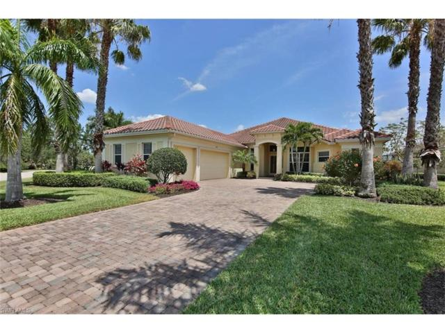 18161 Creekside View Dr, Fort Myers, FL 33908 (#217028626) :: Homes and Land Brokers, Inc