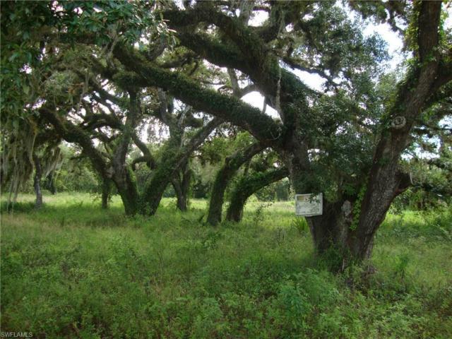 4023 Oak Haven Dr, Labelle, FL 33935 (MLS #217029081) :: The New Home Spot, Inc.