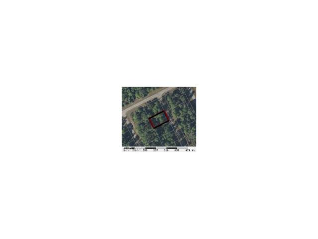 402 Altamont Loop, Labelle, FL 33440 (MLS #217029151) :: The New Home Spot, Inc.