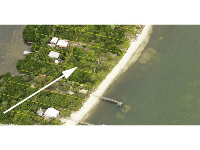 11420 Pejuan Shores, Other, FL 33924 (#217029687) :: Homes and Land Brokers, Inc