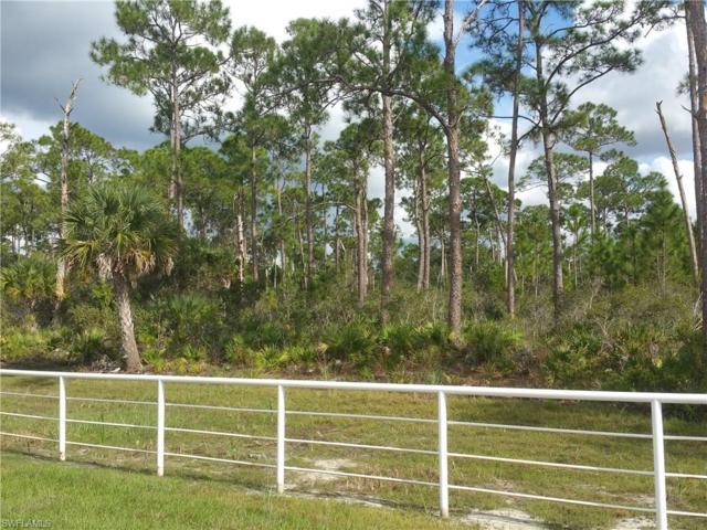 24502 Yacht Club Blvd, Punta Gorda, FL 33955 (MLS #217029745) :: The New Home Spot, Inc.
