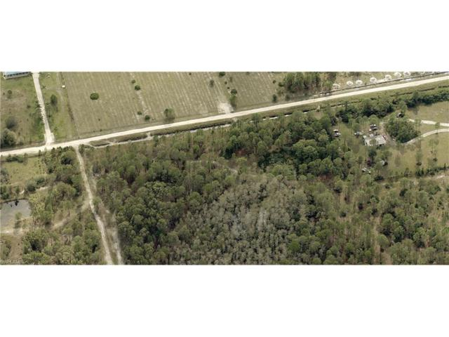 20300 Estero Pines Rd, Estero, FL 33928 (MLS #217030086) :: The New Home Spot, Inc.