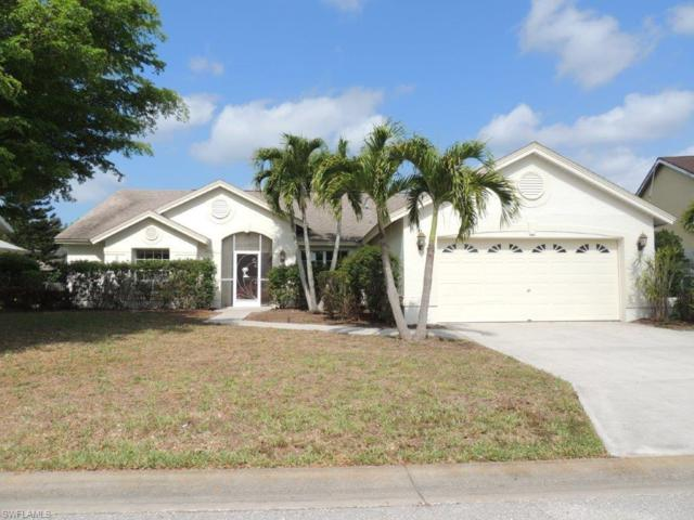 22620 Forest View Dr, Estero, FL 33928 (MLS #217030206) :: The New Home Spot, Inc.