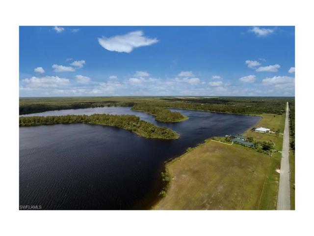 425 Shady Hollow Blvd W, Naples, FL 34120 (MLS #217030604) :: The New Home Spot, Inc.