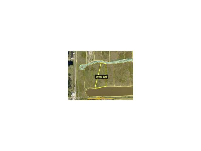 22728 Yellow Button Ln, Alva, FL 33920 (MLS #217031742) :: The New Home Spot, Inc.