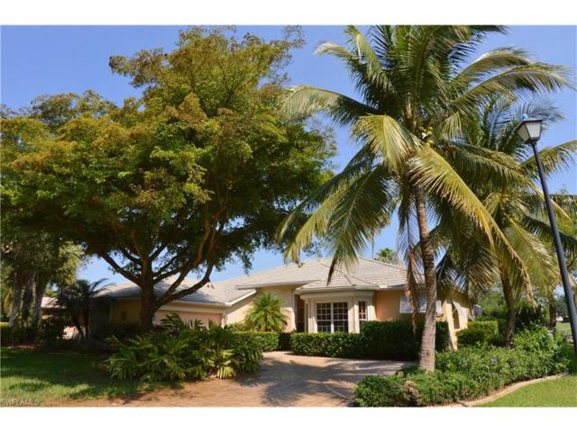10551 Curry Palm Ln, Fort Myers, FL 33966 (MLS #217031989) :: The New Home Spot, Inc.