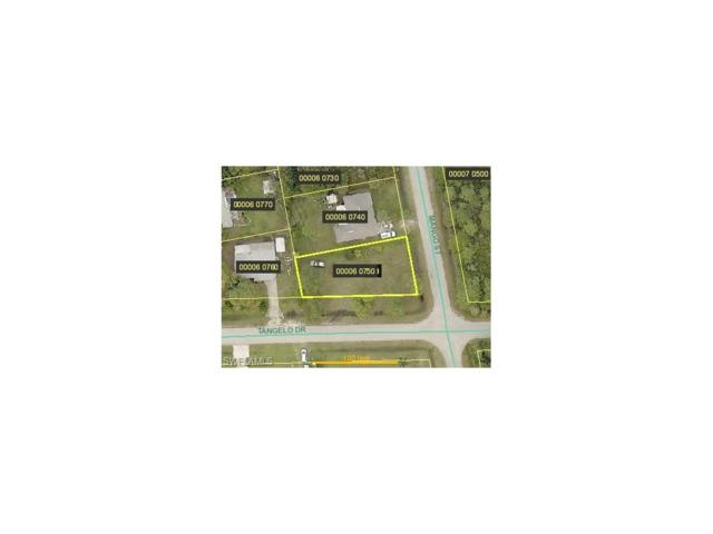 3902 Mango St, Other, FL 33956 (#217032344) :: Homes and Land Brokers, Inc