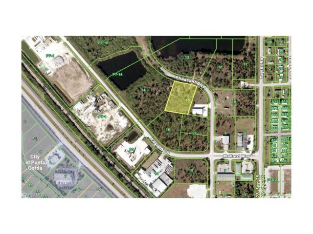 10271 Pheasant Blvd, Punta Gorda, FL 33950 (MLS #217033273) :: The New Home Spot, Inc.
