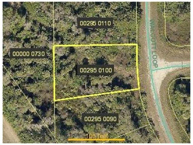 1953 Walcott Loop, Lehigh Acres, FL 33972 (MLS #217033433) :: The New Home Spot, Inc.