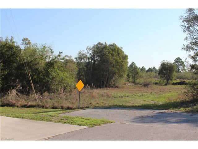 Cove Lake Rd, Lehigh Acres, FL 33974 (#217033466) :: Homes and Land Brokers, Inc
