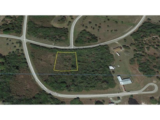 1176 Hicpochee Blvd, Moore Haven, FL 33471 (MLS #217033475) :: The New Home Spot, Inc.