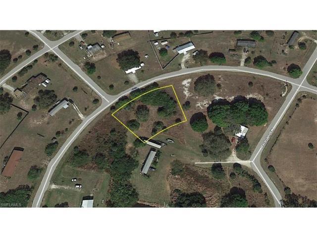 1432 Horseshoe Loop, Moore Haven, FL 33471 (MLS #217033484) :: The New Home Spot, Inc.